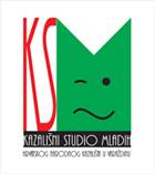 Kazališni studio mladih